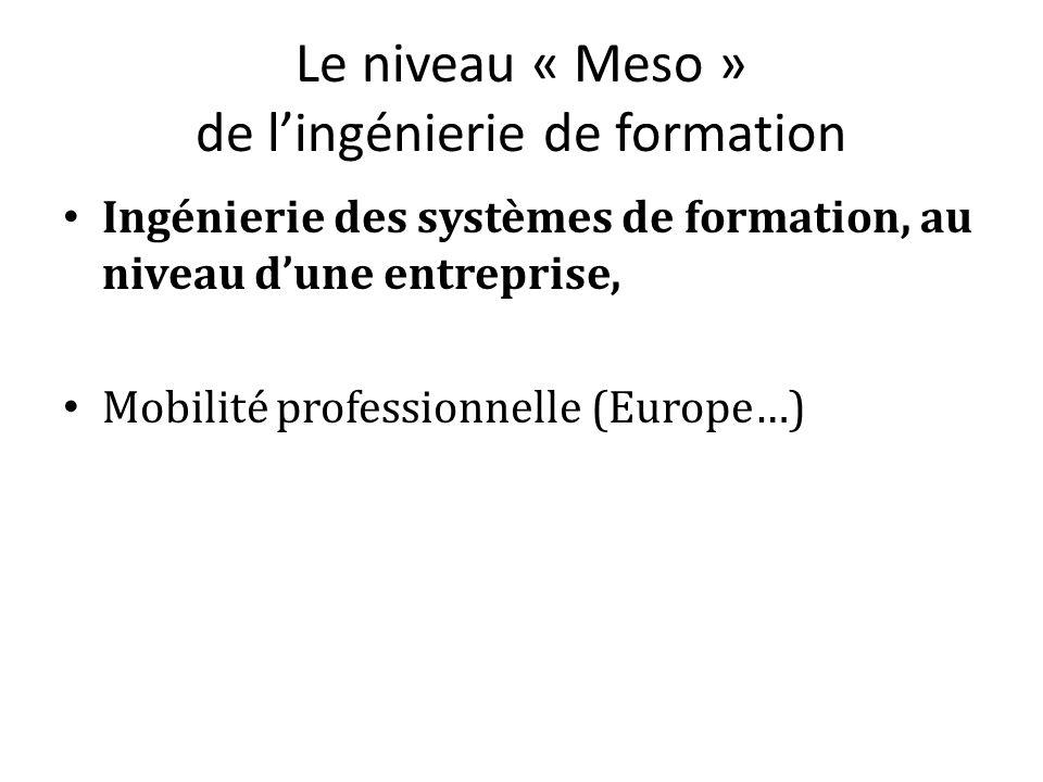 Le niveau « Meso » de lingénierie de formation Ingénierie des systèmes de formation, au niveau dune entreprise, Mobilité professionnelle (Europe…)