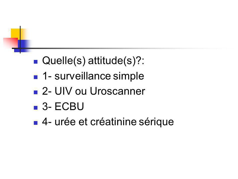 Quelle(s) attitude(s)?: 1- surveillance simple 2- UIV ou Uroscanner 3- ECBU 4- urée et créatinine sérique