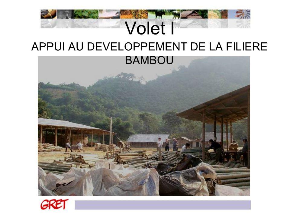 Volet I APPUI AU DEVELOPPEMENT DE LA FILIERE BAMBOU