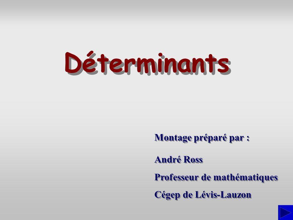 Montage préparé par : André Ross Professeur de mathématiques Cégep de Lévis-Lauzon André Ross Professeur de mathématiques Cégep de Lévis-Lauzon Déterm