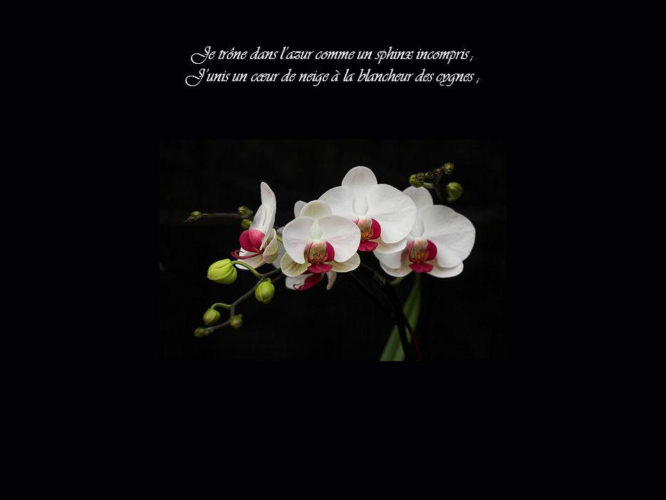 Est fait pour inspirer au poète un amour Éternel et muet ainsi que la matière.