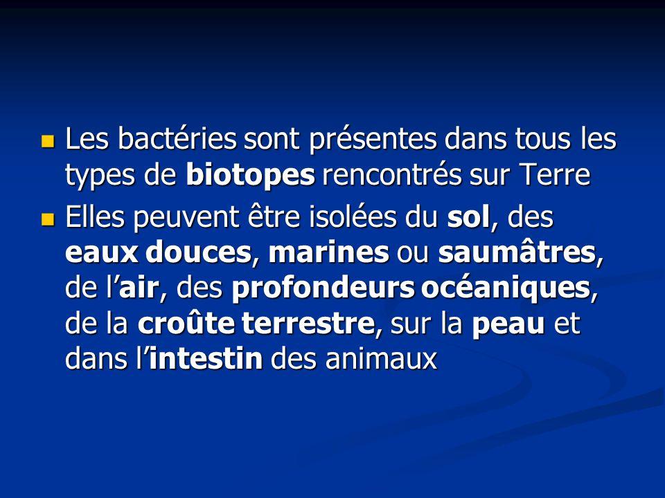 Les bactéries sont présentes dans tous les types de biotopes rencontrés sur Terre Les bactéries sont présentes dans tous les types de biotopes rencont