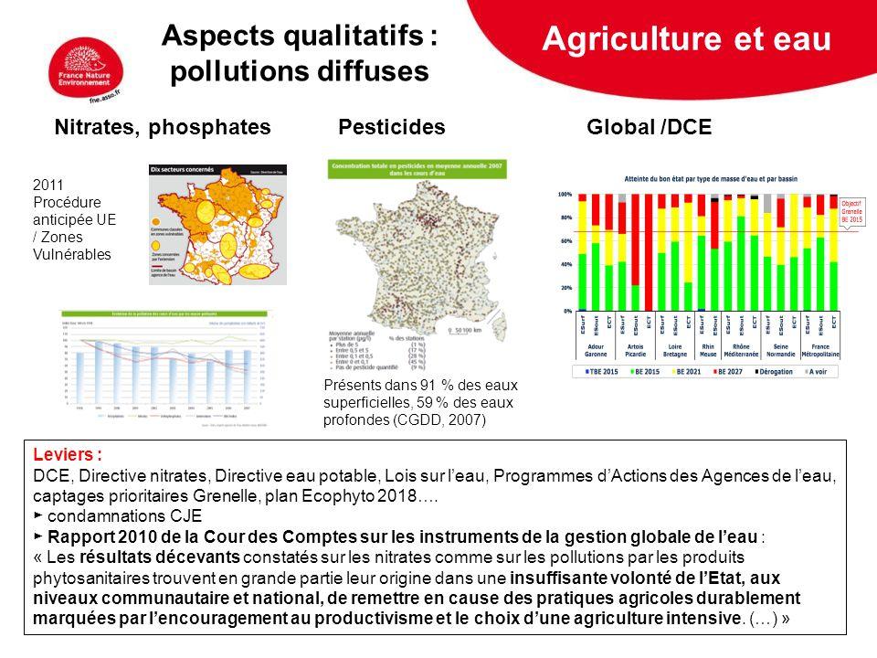 5 février 2009 Nitrates, phosphates Pesticides Global /DCE Leviers : DCE, Directive nitrates, Directive eau potable, Lois sur leau, Programmes dAction