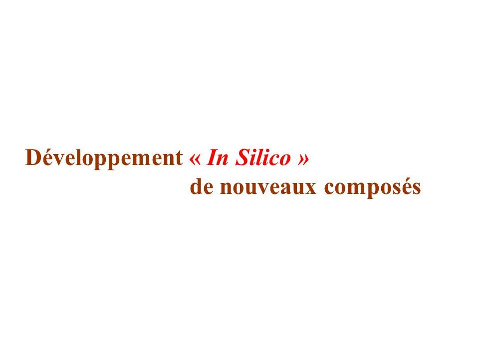 Développement « In Silico » de nouveaux composés