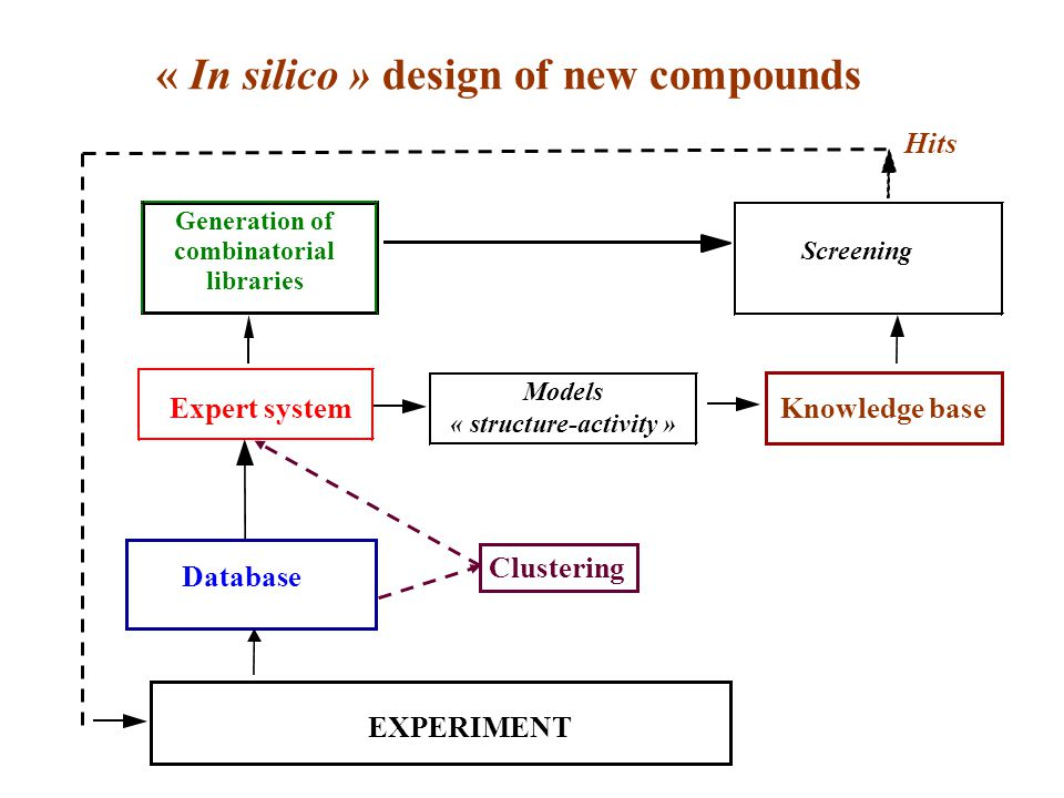 « In silico » design of new compounds Generation of combinatorial libraries Models « structure-activity » Database Expert system Clustering Knowledge