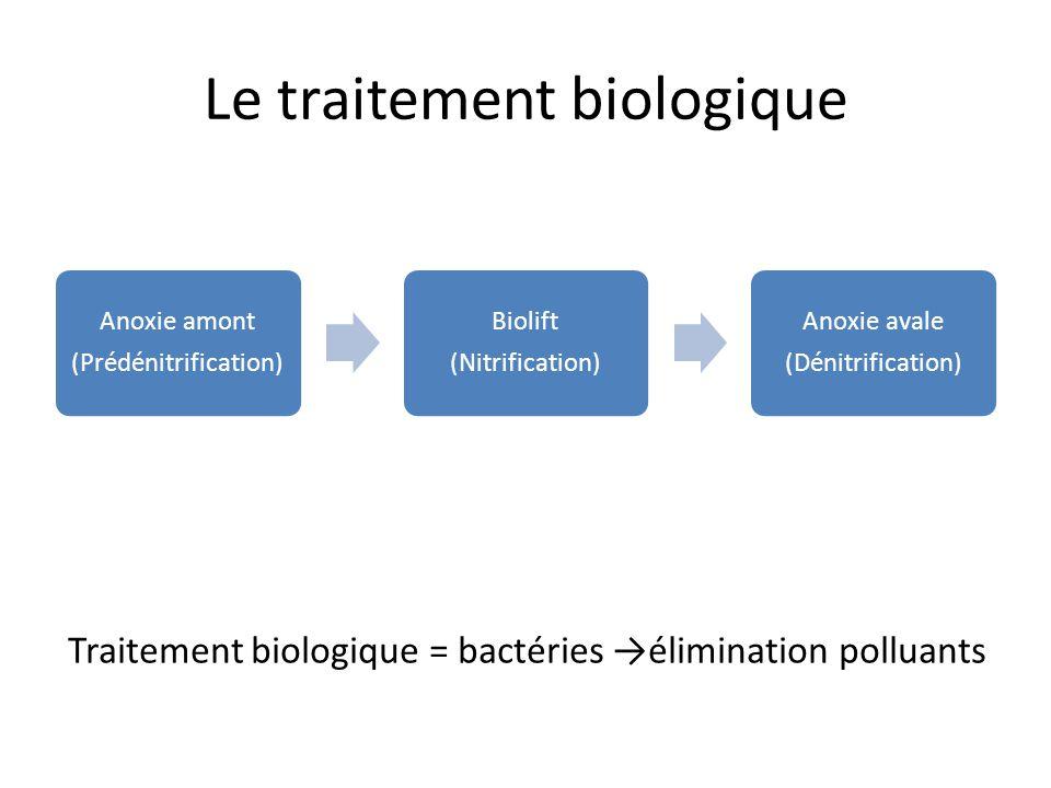 Le traitement biologique Traitement biologique = bactéries élimination polluants Anoxie amont (Prédénitrification) Biolift (Nitrification) Anoxie aval