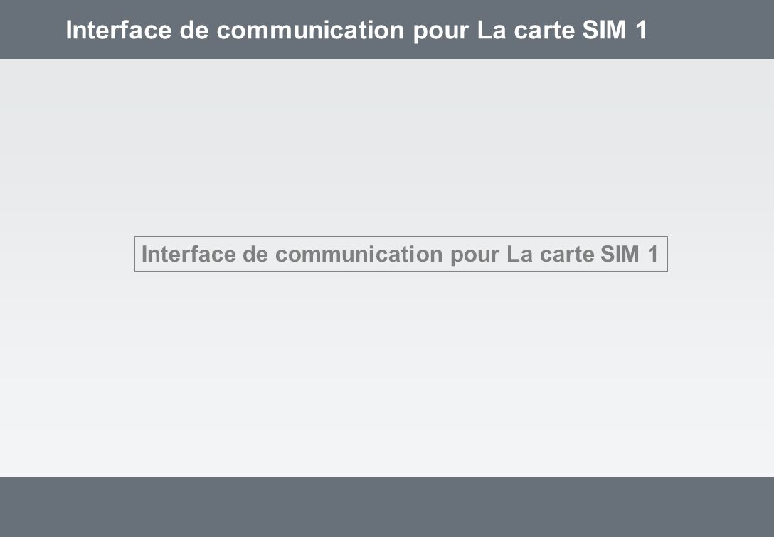 Interface de communication pour La carte SIM 1