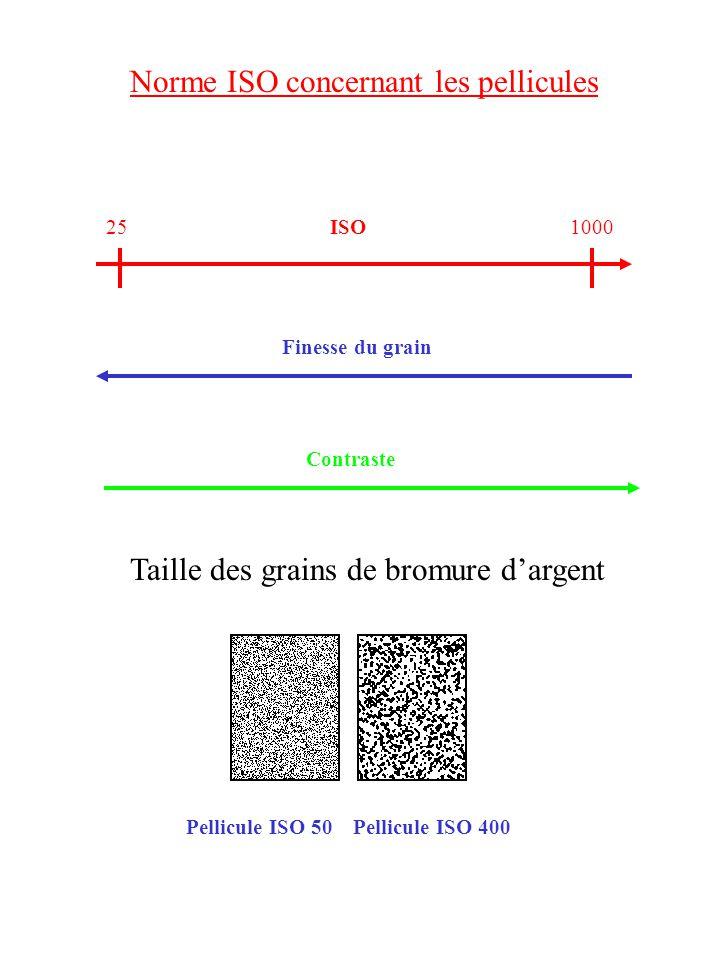 Norme ISO concernant les pellicules 100025ISO Finesse du grain Contraste Pellicule ISO 50 Pellicule ISO 400 Taille des grains de bromure dargent