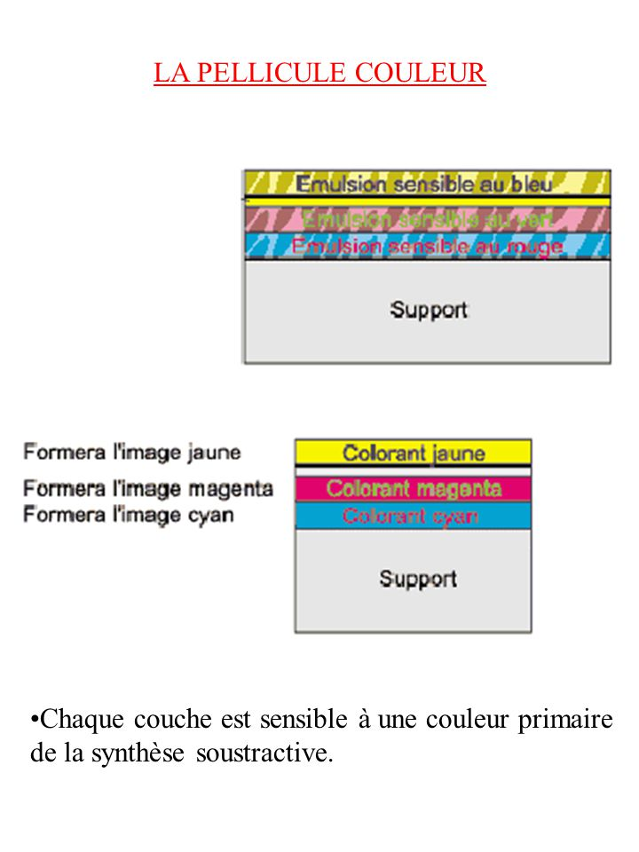 LA PELLICULE COULEUR Chaque couche est sensible à une couleur primaire de la synthèse soustractive.