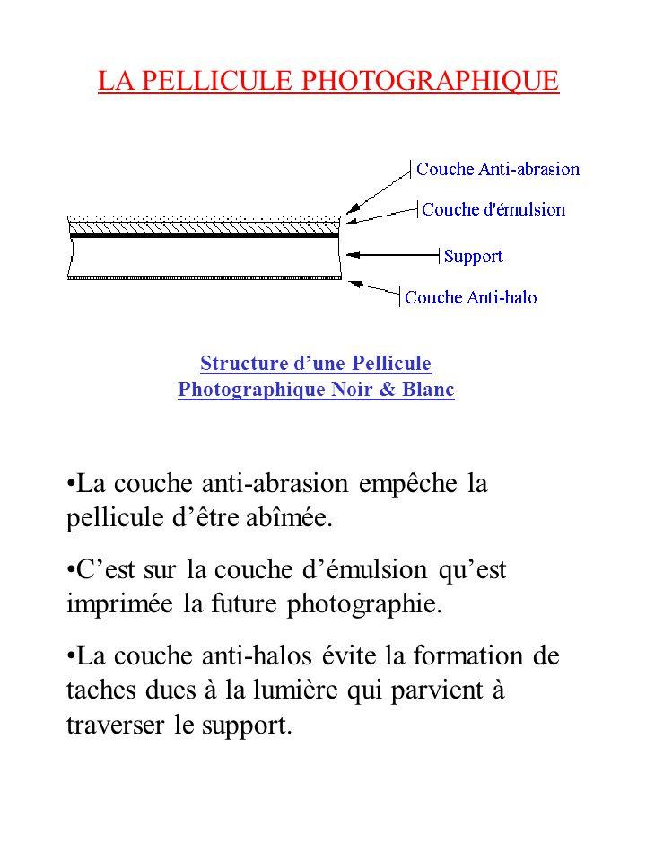 LA PELLICULE PHOTOGRAPHIQUE Structure dune Pellicule Photographique Noir & Blanc La couche anti-abrasion empêche la pellicule dêtre abîmée.