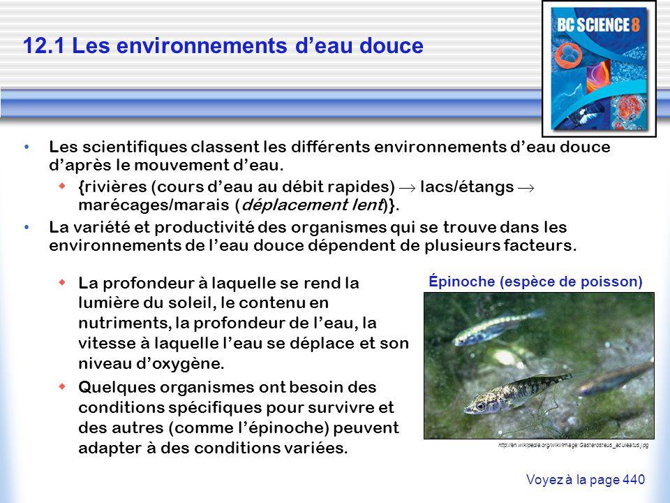 Les scientifiques classent les différents environnements deau douce daprès le mouvement deau. {rivières (cours deau au débit rapides) lacs/étangs maré