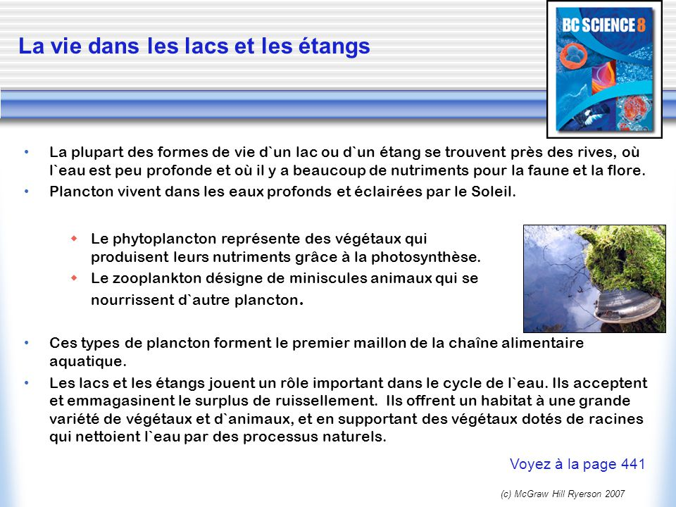 (c) McGraw Hill Ryerson 2007 La vie dans les marécages Les marécages sont trouvé à côté d`autres sources d`eaux.