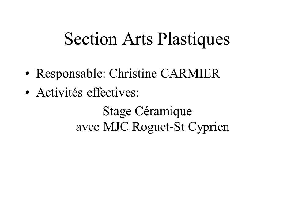 Section Arts Plastiques Responsable: Christine CARMIER Activités effectives: Stage Céramique avec MJC Roguet-St Cyprien