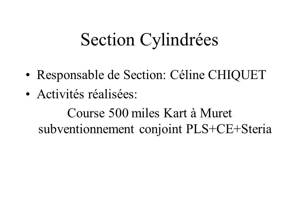 Section Cylindrées Responsable de Section: Céline CHIQUET Activités réalisées: Course 500 miles Kart à Muret subventionnement conjoint PLS+CE+Steria