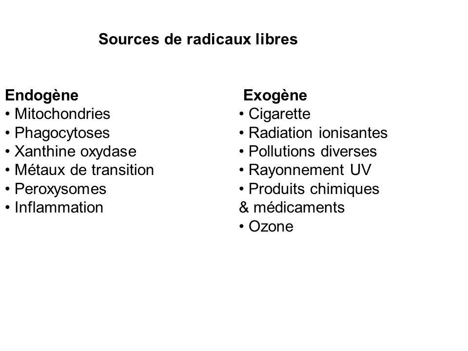 Sources de radicaux libres Endogène Exogène Mitochondries Cigarette Phagocytoses Radiation ionisantes Xanthine oxydase Pollutions diverses Métaux de transition Rayonnement UV Peroxysomes Produits chimiques Inflammation& médicaments Ozone