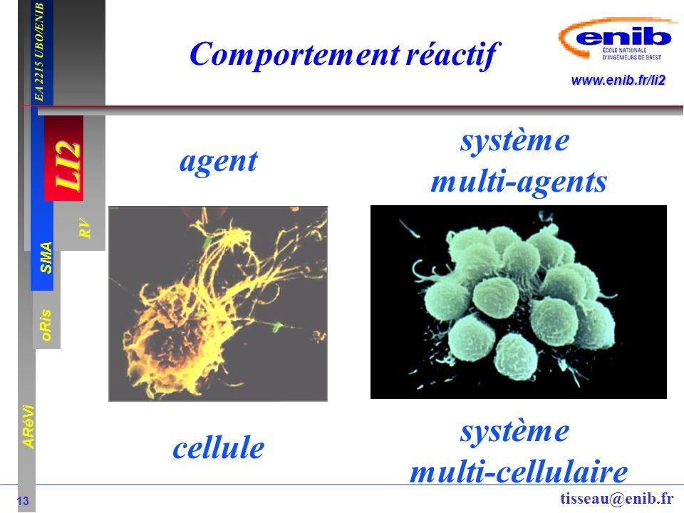 LI2 oRis ARéVi 13 RV SMA www.enib.fr/li2 EA 2215 UBO/ENIB tisseau@enib.fr Comportement réactif cellule système multi-cellulaire agent système multi-ag