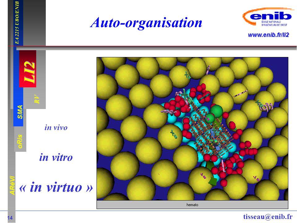 LI2 oRis ARéVi 14 RV SMA www.enib.fr/li2 EA 2215 UBO/ENIB tisseau@enib.fr Auto-organisation « in virtuo » in vivo in vitro
