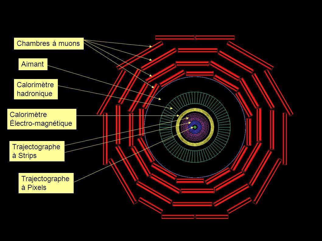 Chambres à muons Aimant Calorimètre hadronique Calorimètre Électro-magnétique Trajectographe à Strips Trajectographe à Pixels