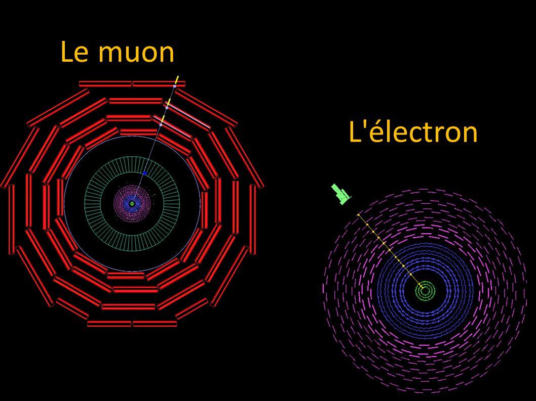 L électron Le muon