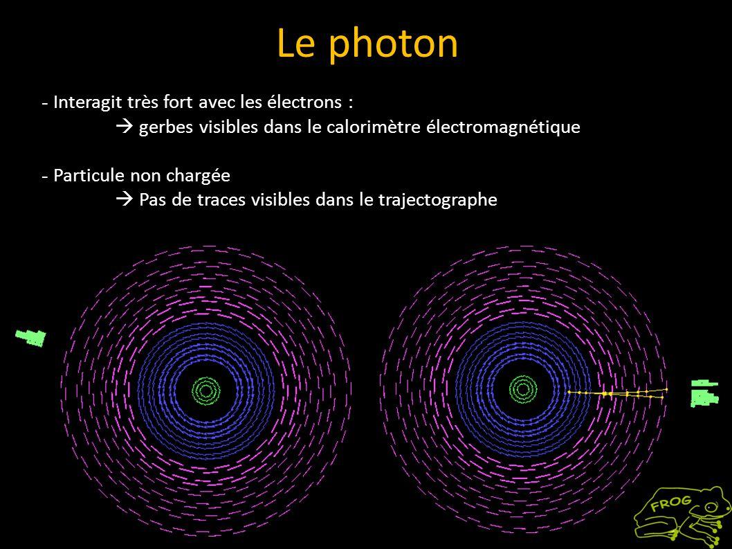 - Interagit très fort avec les électrons : gerbes visibles dans le calorimètre électromagnétique - Particule non chargée Pas de traces visibles dans le trajectographe Le photon