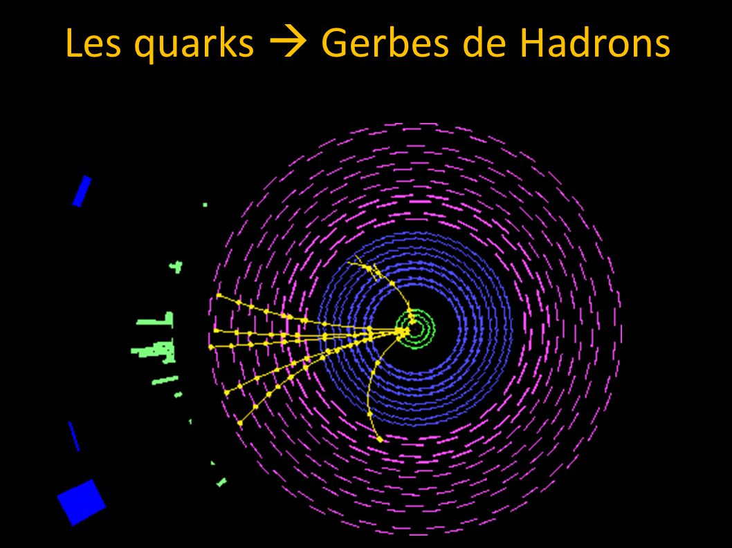 Les quarks Gerbes de Hadrons