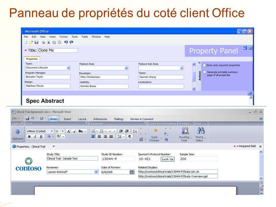 Panneau de propriétés du coté client Office