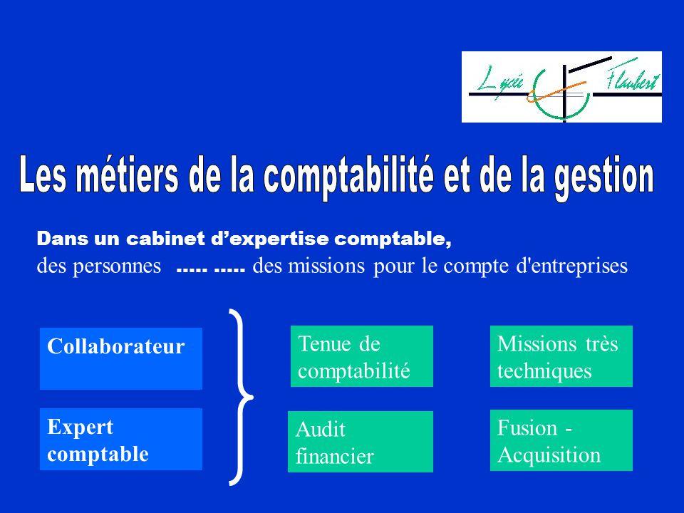 Dans un cabinet dexpertise comptable, des personnes ….. ….. des missions pour le compte d'entreprises Tenue de comptabilité Missions très techniques A