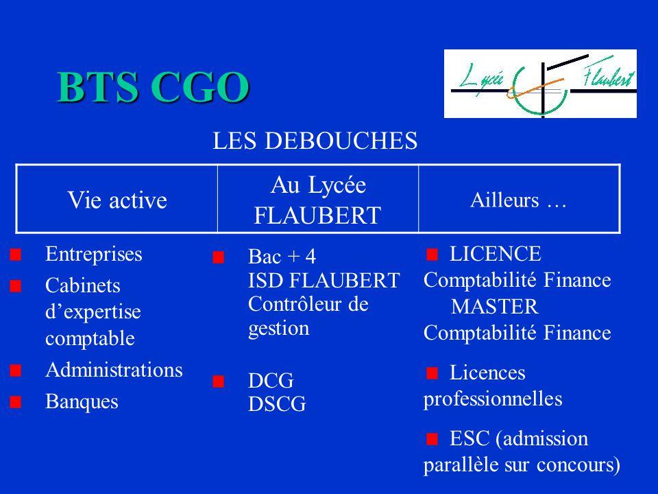 Entreprises Cabinets dexpertise comptable Administrations Banques Bac + 4 ISD FLAUBERT Contrôleur de gestion DCG DSCG BTS CGO LES DEBOUCHES LICENCE Co