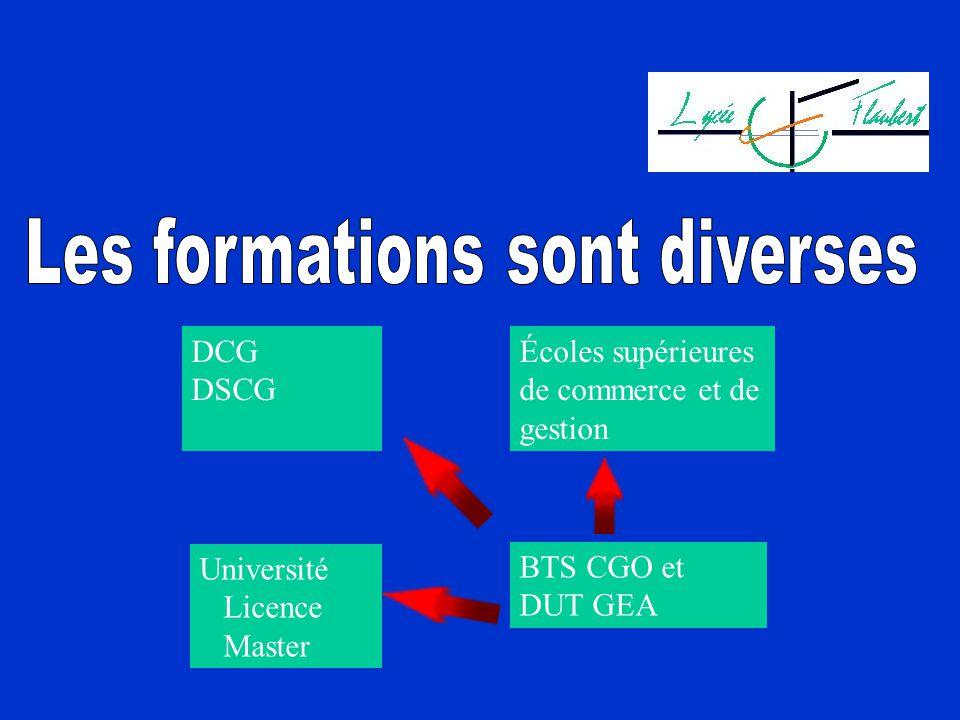 DCG DSCG Écoles supérieures de commerce et de gestion Université Licence Master BTS CGO et DUT GEA