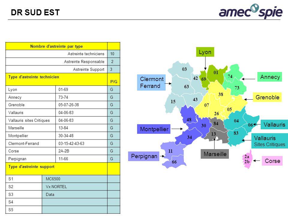 Nombre d'astreinte par type Astreinte techniciens10 Astreinte Responsable 2 Astreinte Support3 Type d'astreinte technicien P/G Lyon01-69G Annecy73-74G