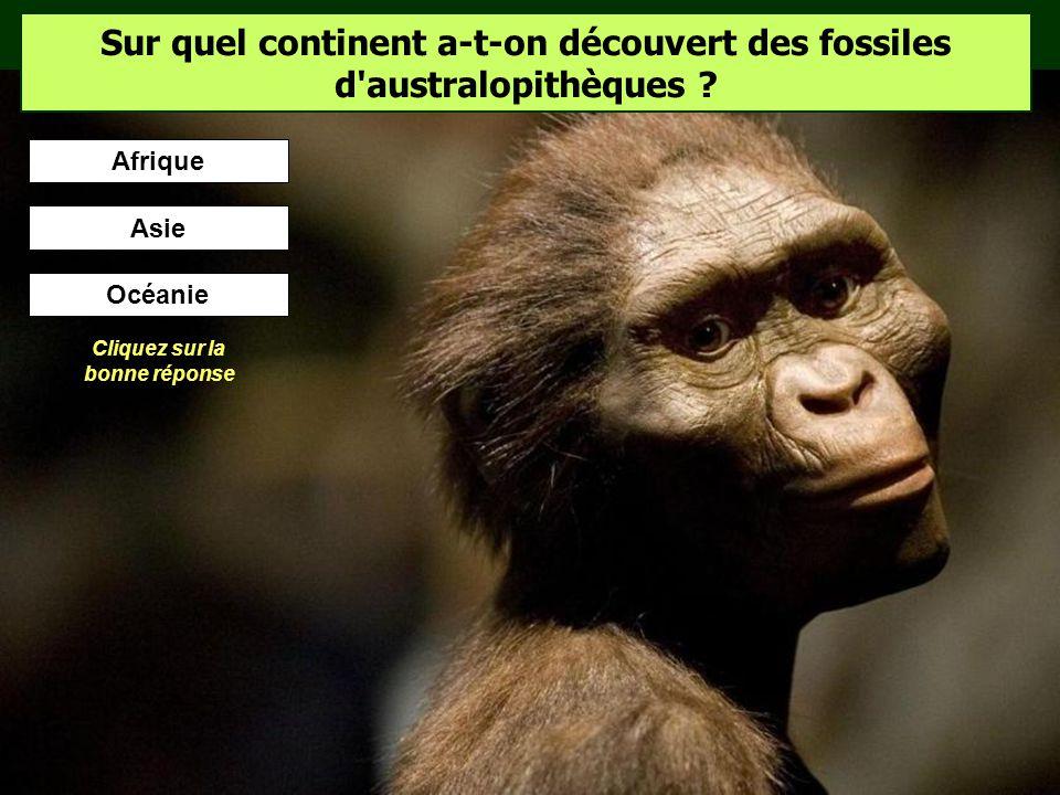 Les hommes préhistoriques ont-ils vu des dinosaures ? Les dinosaures ont disparu il y a 65 millions dannées. Cétait bien avant les premiers hominidés…