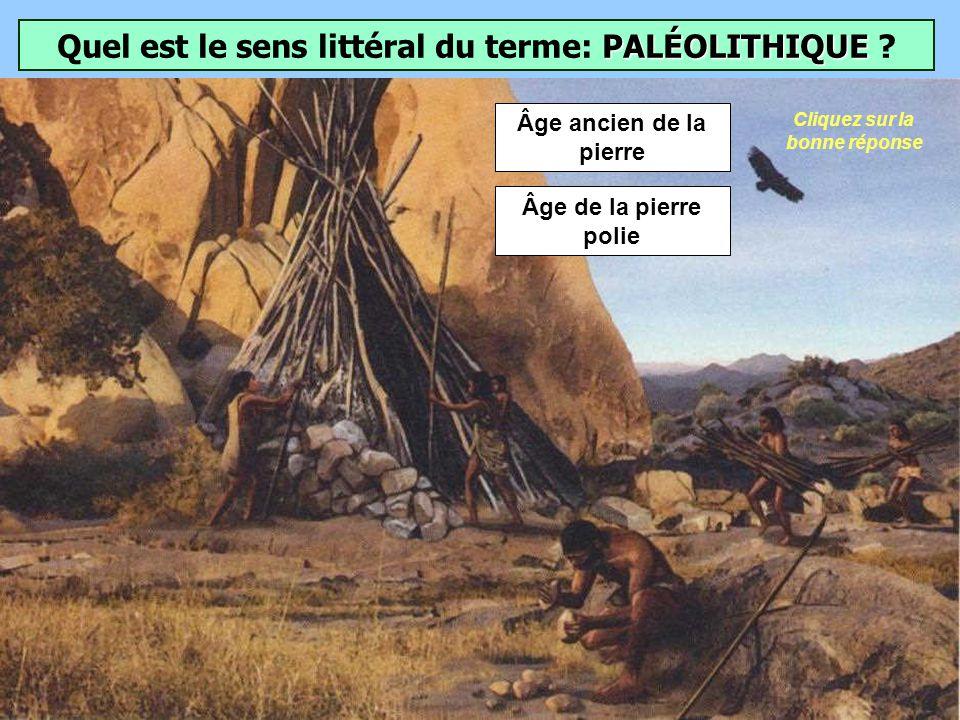 Quel nom a-t-on donné à ce fossile daustralopithèque découvert en 1974 en Éthiopie par une équipe internationale ? Lucy appartient à lespèce Australop