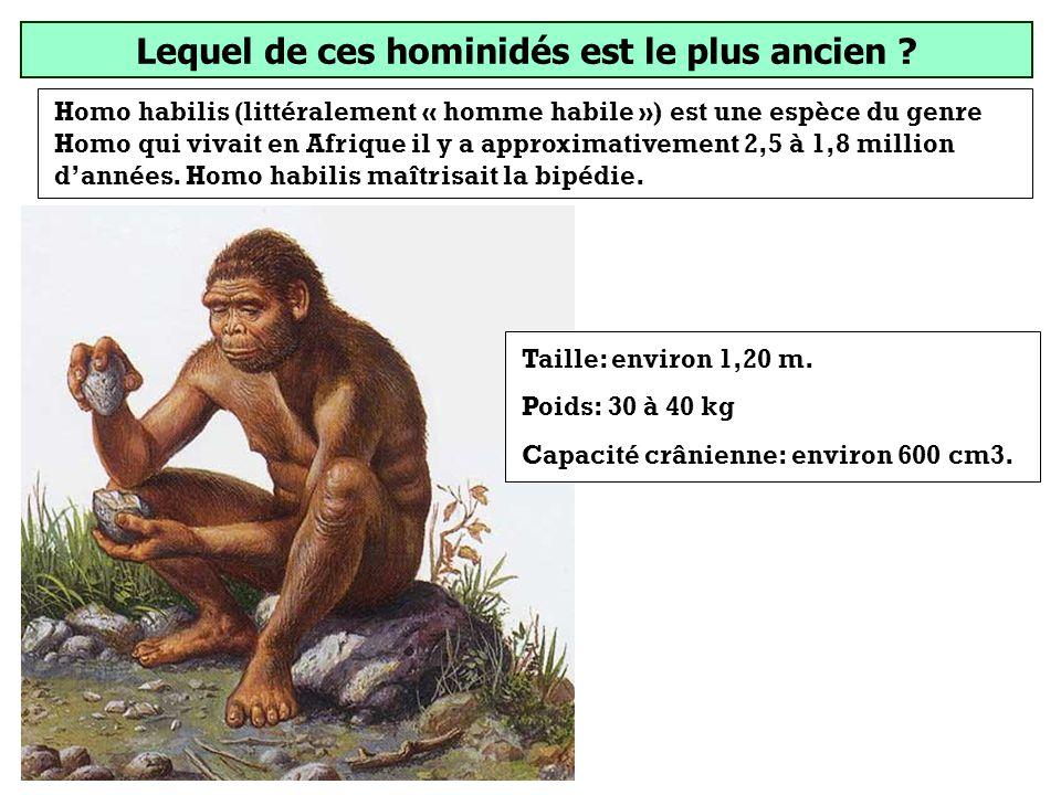 Lequel de ces hominidés est le plus ancien ? Homo erectus Homo habilis Homo sapiens (Il vivait au paléolithique inférieur)