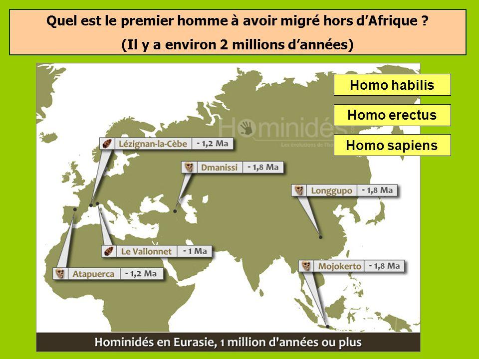 Quels outils fabriquait Homo habilis ? Les galets aménagés: ces outils devaient permettre à Homo habilis de découper des morceaux de viande ou de cass