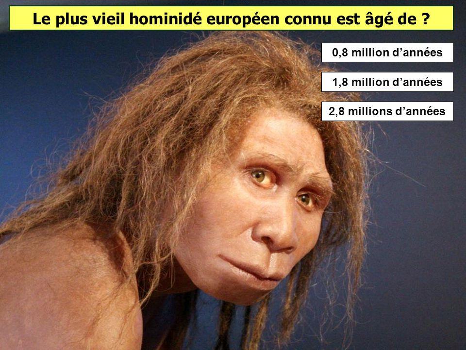 Quel est le premier homme à avoir migré hors dAfrique ? Homo erectus est le premier hominidé à migrer hors d'Afrique. Ce ne sont pas des exodes de mas