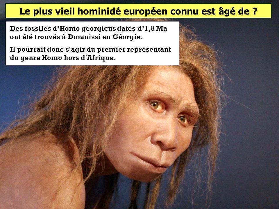 Le plus vieil hominidé européen connu est âgé de ? 0,8 million dannées 1,8 million dannées 2,8 millions dannées