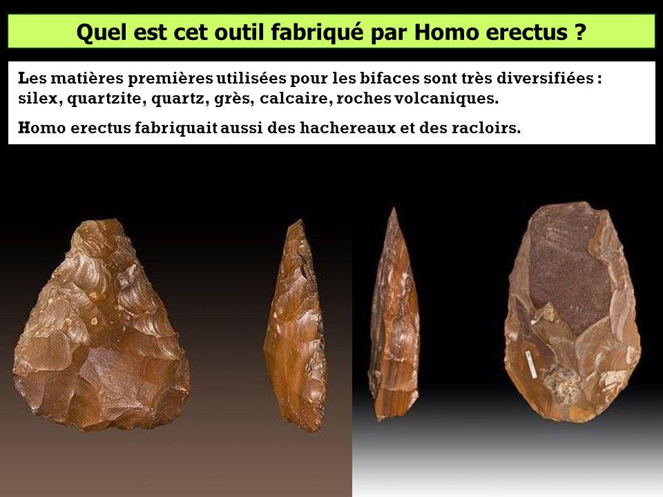Quel est cet outil fabriqué par Homo erectus ? BifaceSagaieMeule