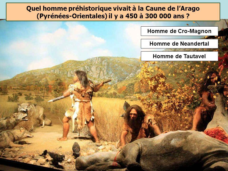 Quel homme a domestiqué le feu le premier ? Les premiers foyers aménagés par des Homo erectus sont attestés depuis environ – 400 000 ans. Dautres site