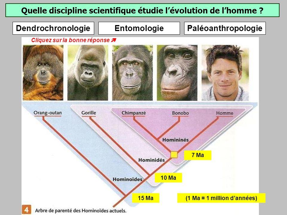 Quelle discipline scientifique étudie lévolution de lhomme .
