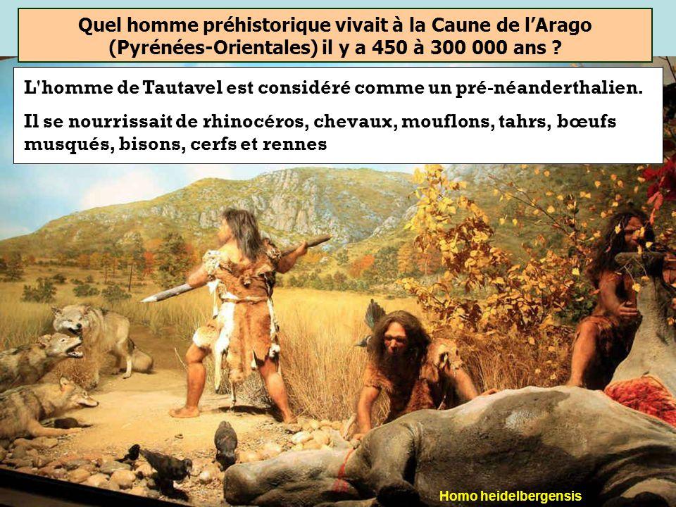 Homme de Cro-Magnon Homme de Neandertal Homme de Tautavel Quel homme préhistorique vivait à la Caune de lArago (Pyrénées-Orientales) il y a 450 à 300