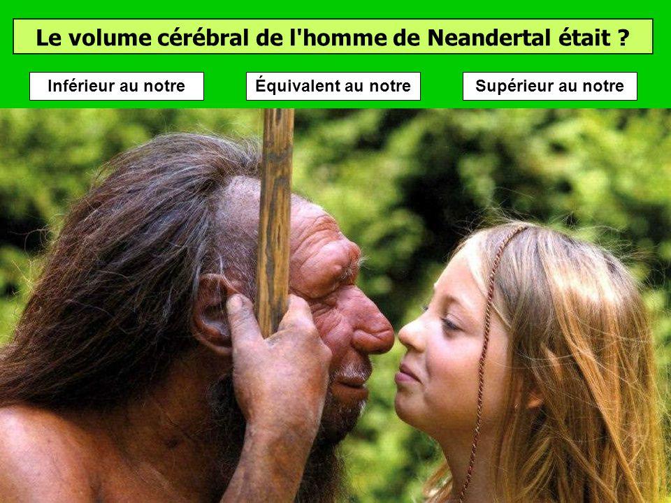 Quand a vécu l'homme de Neandertal ? (environ) Lhomme de Neandertal a vécu en Europe et en Asie occidentale au Paléolithique moyen, pendant environ 30