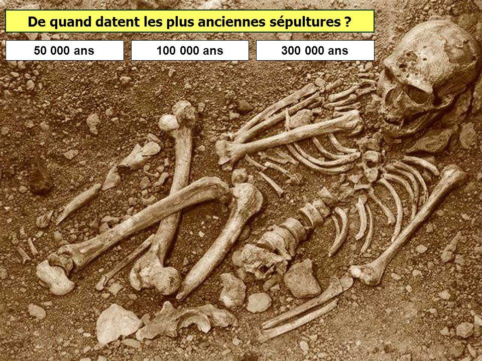 L'Homme de Neandertal et Homo sapiens ont-ils pu se rencontrer ? La disparition de lhomme de Neandertal date denviron 28 000 ans. Il y a donc de forte