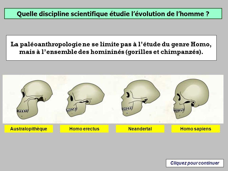 Homo sapiens est le seul représentant actuel du genre Homo.