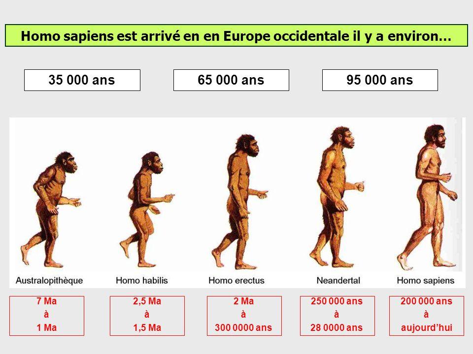 Homo sapiens a été le premier homme à coloniser lAmérique. La présence humaine en Amérique est attestée depuis environ 15000 ans. Mais la date, le che