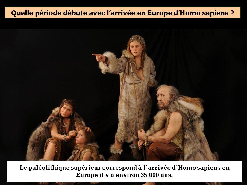 Quelle période débute avec larrivée en Europe dHomo sapiens ? Néolithique Âge des métaux Paléolithique supérieur
