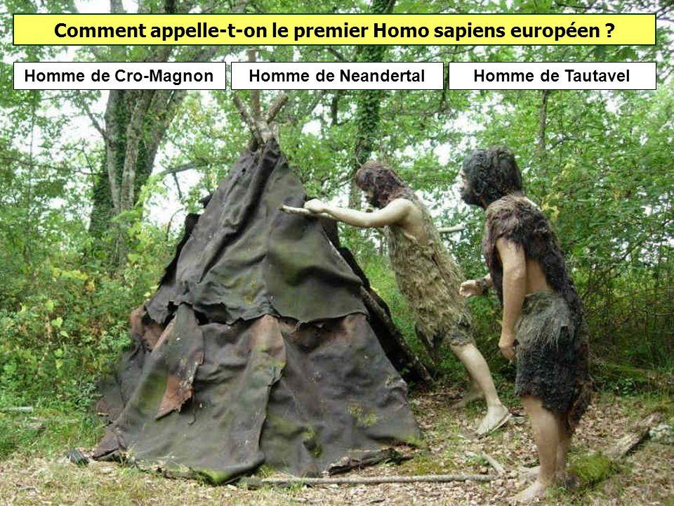 Quelle période débute avec larrivée en Europe dHomo sapiens ? Le paléolithique supérieur correspond à larrivée dHomo sapiens en Europe il y a environ
