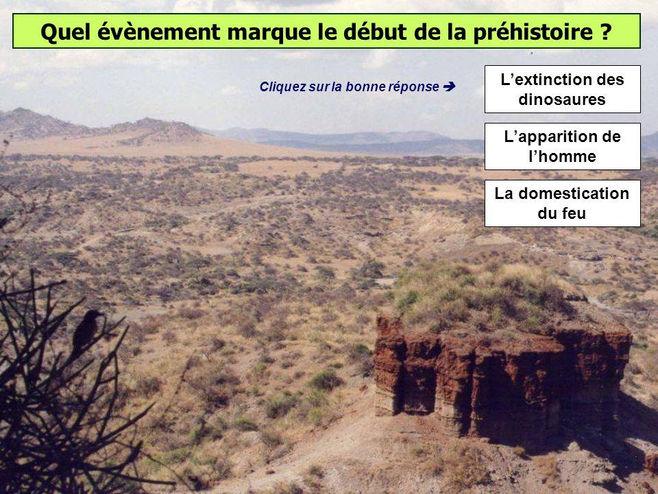 De quand date la sortie dAfrique de lHomo sapiens ? 40 000 ans 150 000 ans 600 000 ans