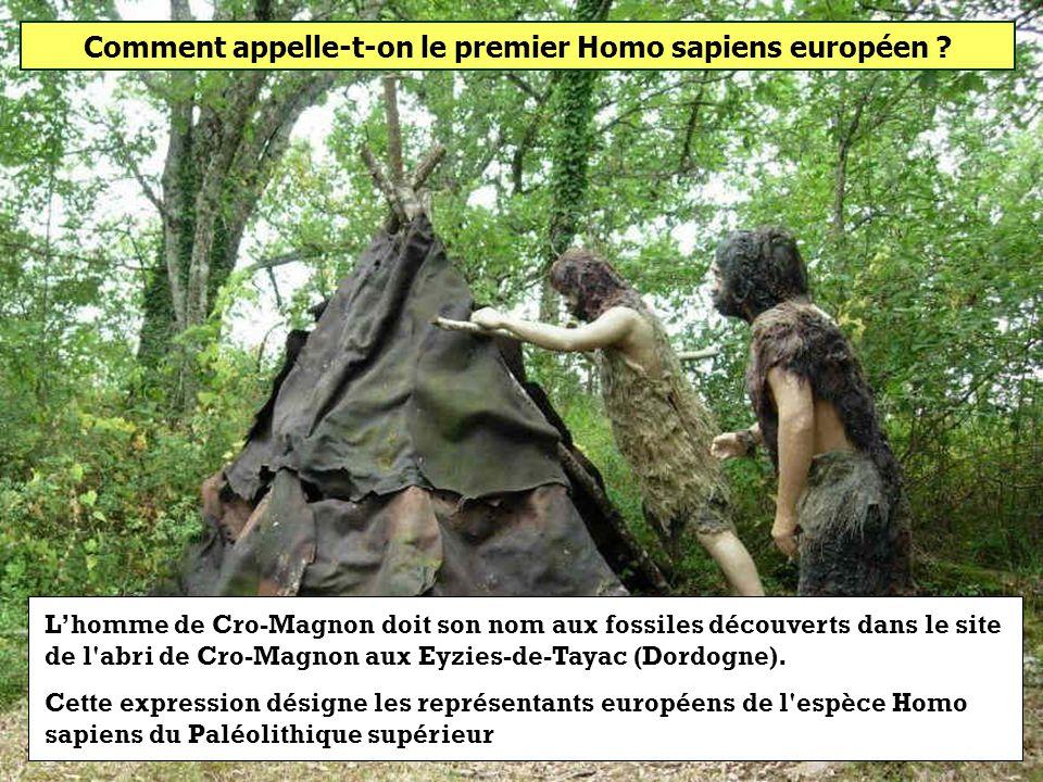Comment appelle-t-on le premier Homo sapiens européen ? Homme de Cro-MagnonHomme de NeandertalHomme de Tautavel
