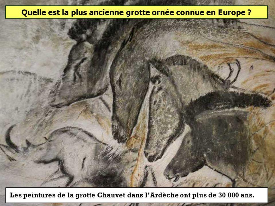 Quelle est la plus ancienne grotte ornée connue en Europe ? Grotte Chauvet Grotte de Niaux Grotte Cosquer