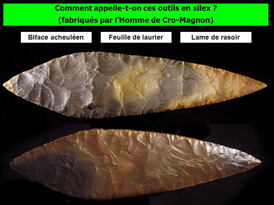 Quelle est la plus ancienne grotte ornée connue en Europe ? Les peintures de la grotte Chauvet dans lArdèche ont plus de 30 000 ans.